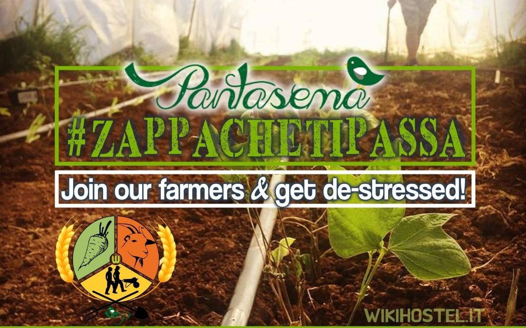 Wiki Hostel 'FARMER FOR A DAY' Pantasema experience