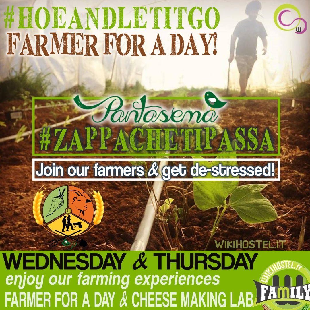 Wiki Hostel 'FARMER FOR A DAY' Pantasema experience